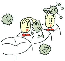 再石灰化の促進、ムシ歯菌の活動を抑制します。